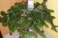 Świąteczne dekoracje w naszym DPS